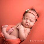 newborn baby photographer anchorage ak