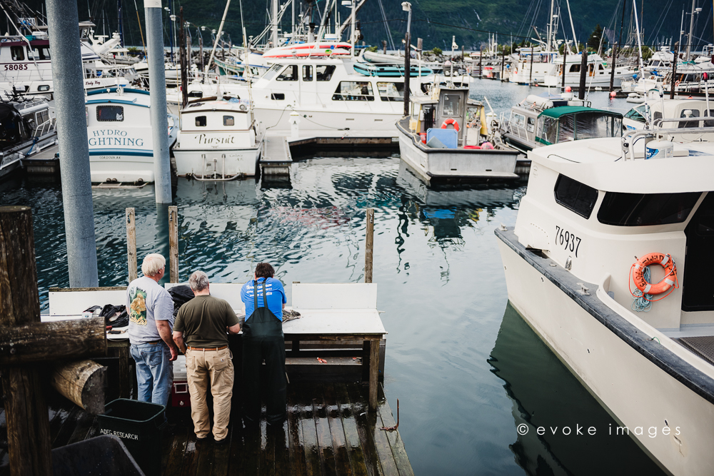 Whittier alaska dock cleaning fish