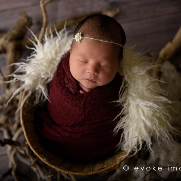Anchorage Newborn Photography